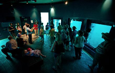 underwater-observatory