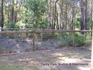 image darby-park-margaret-river-25-jpg