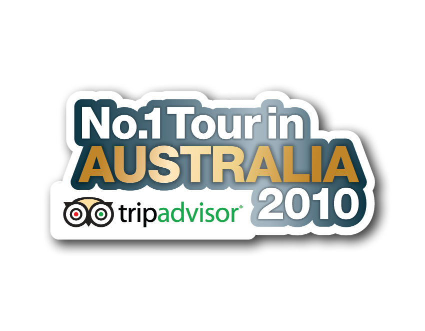 no-1-in-trip-advisor