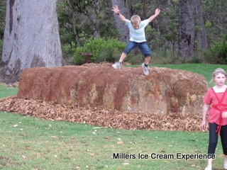 millers-ice-cream-experience-7