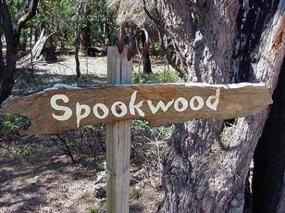 image spookwood-yallingup-6-jpg