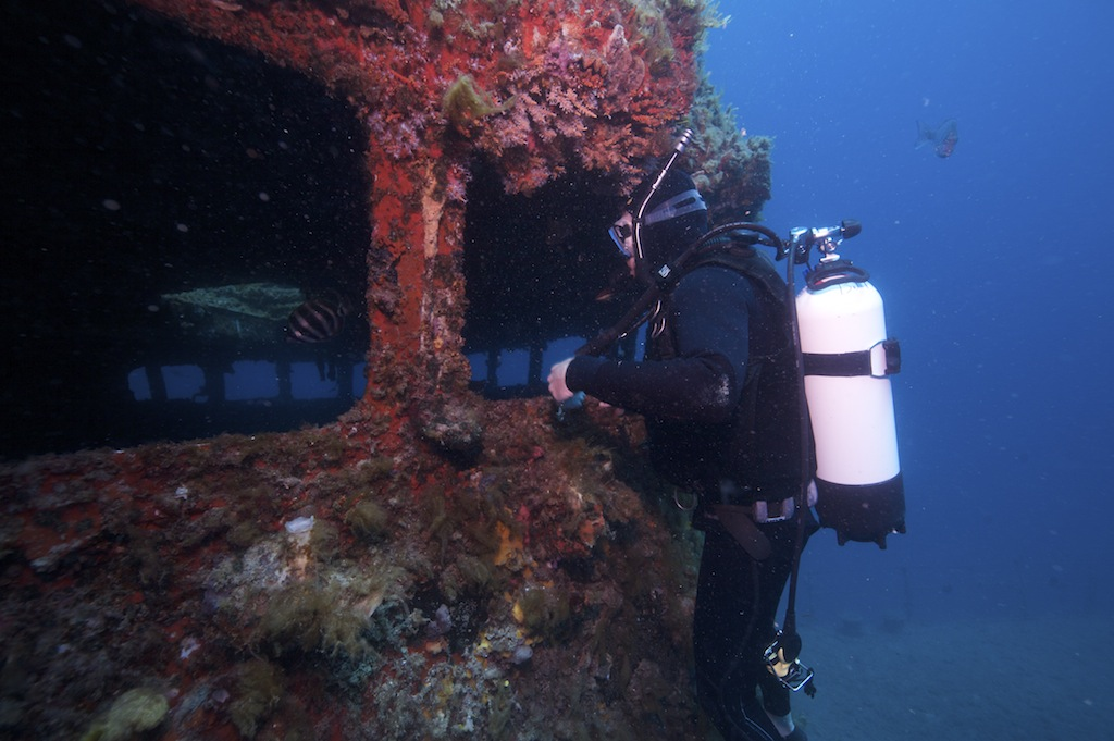Scuba Diving in a Sunken Ship