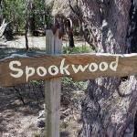 Spookwood, Yallingup