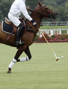 Polo Team Emerges Victorious In Hard Fought Final