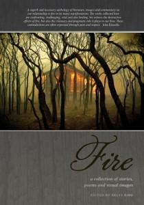 Fire-Book Launch