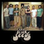 The Black Seeds @ Clancys Fish Pub – 23rd November 2014