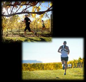 Vineyard Half Marathon